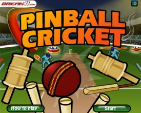 Pinball Cricket